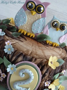close up owls