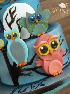 Owl cake close up